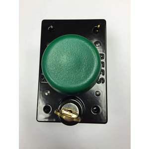 REES 03855-003 Pulsante a pistone con serratura a chiave, verde | AX3KYE