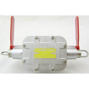 REES 04968-202 Interruttore antideflagrante, indicatore a bandiera, entrambi i lati | AX3LEF