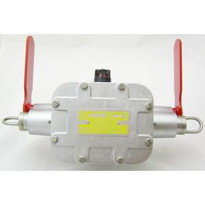 REES 04968-214 Interruttore antideflagrante, indicatore a bandiera, entrambi i lati | AX3LEH
